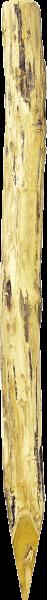 Robinienpfahl rund, Länge 2,25 m, D = 14-16 cm