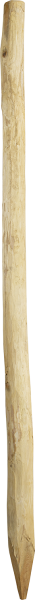 Robinienpfahl, rund, 2,0 m, d= 6-8 cm, gefast, 4-fach gespitzt, entrindet
